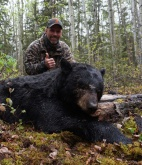 2016 Alberta Black Bear Hunts